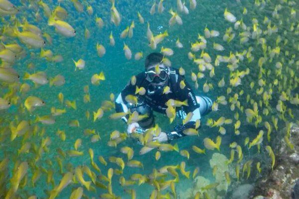 Sidemount Diving Course in Phuket