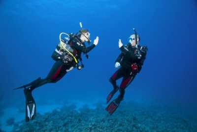 Try Scuba Diving in Phuket